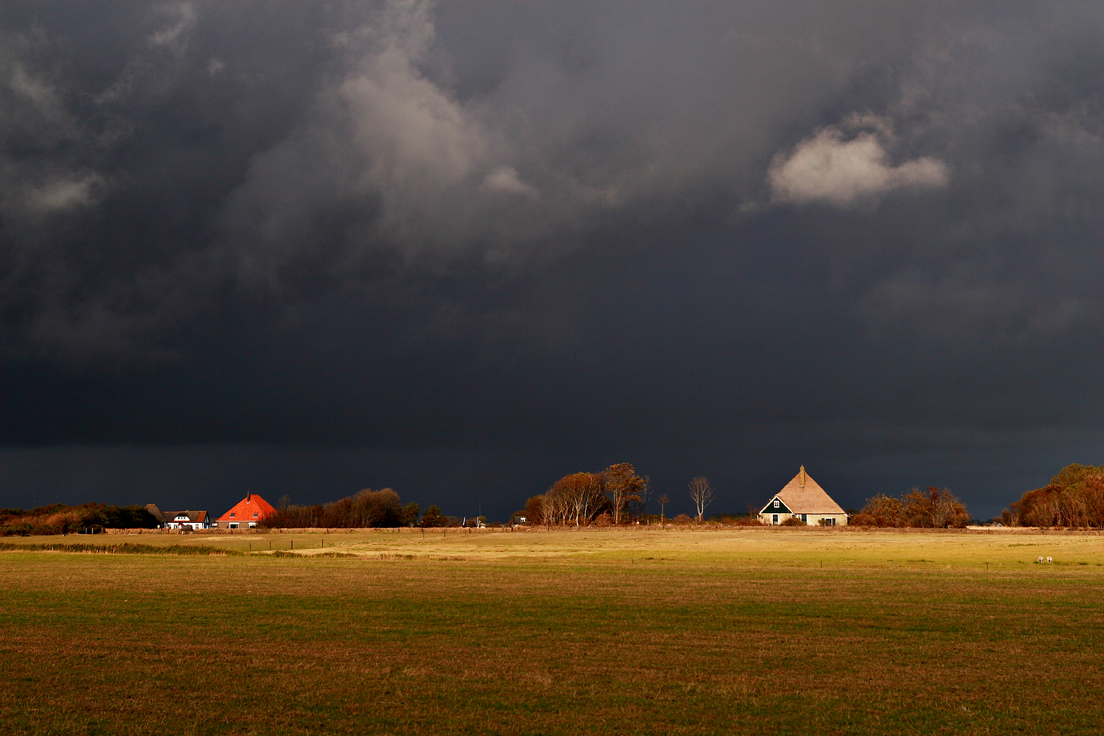 Texel – Arnoud van Tilburg1600 x 1067